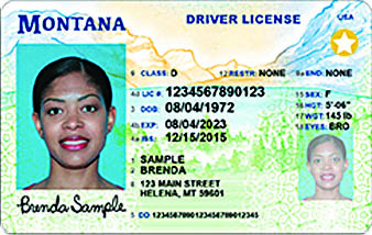 drivers license renewal livingston montana